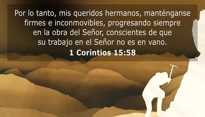 Debemos estar al servicio de Dios