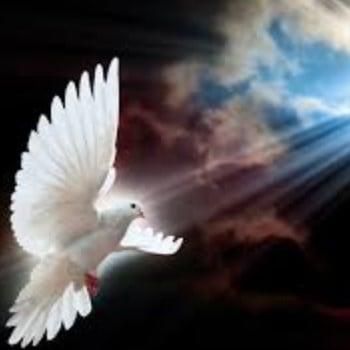 Los 6 pecados contra el Espíritu Santo