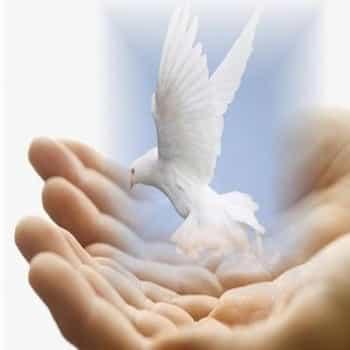 La paz del Señor