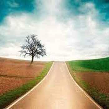 El mejor camino