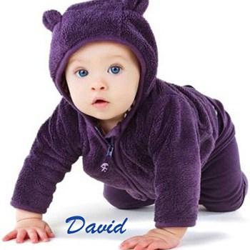 Significado bíblico del nombre David