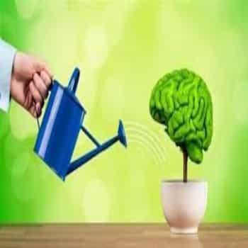 Cómo cuidar la mente
