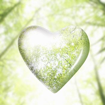 Bienaventurados los de limpio corazón