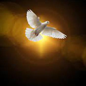 La obra del Espíritu Santo